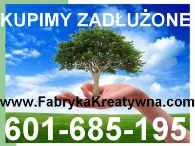 Skupujemy Zadłużone Spółki 299 Ksh
